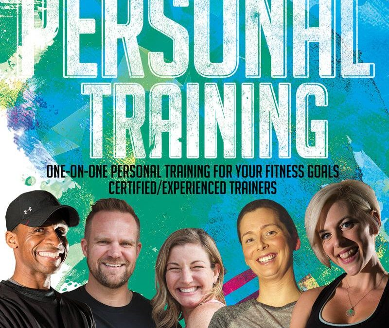 Sarasota's Certified Experienced Trainers
